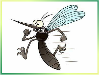 Come proteggersi dalle zanzare: tutti i rimedi davvero efficaci per adulti e bambini